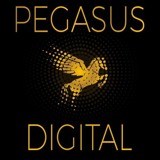 Pegasus Digital - Digital Solutions Specialists Strictly